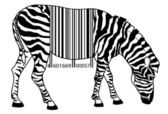 Zebra beroerte een code — Stockvector