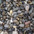 Sea pebble - Stock Photo