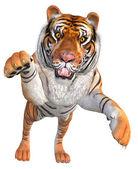 Jumping tiger — Stock Photo