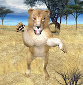Jumping lion — Stock Photo