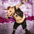 Punk pig toon — Stock Photo