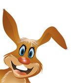 Söt kanin — Stockvektor