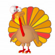 Turkey toon — Stock Photo