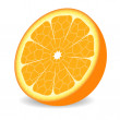Orange fruit — Imagen vectorial