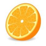 Orange fruit — Stock Vector