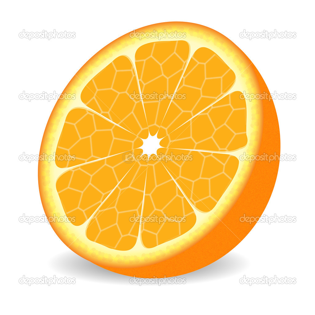 Orange Fruit Vector Orange fruit — Stock...