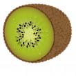 Fresh kiwi — Stock Vector #5123261