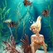 Foto de Stock  : Mermaid