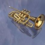 Trumpet — Stock Photo #5314767