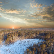 Stock Photo: Sunset in deep forest