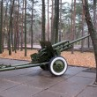Foto de Stock  : Gun in forest. Defense.
