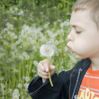Royalty-Free Stock Photo: Little boy blows on a dandelion