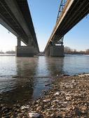 Under bridge — Stock Photo