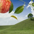 Apple landscap — Stock Photo