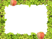 Green frame anf apple — Stock Photo