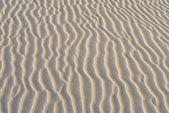 波罗的海海岸 2 — 图库照片