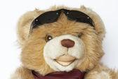 Cool Teddy bear — Stock Photo