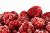 Frozen Raspberry — Stock Photo