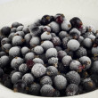 Frozen blackcurrants — Stock Photo