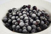 Frozen blackcurrants — Stock Photo