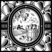 Apple harvest black and white — Stock Vector