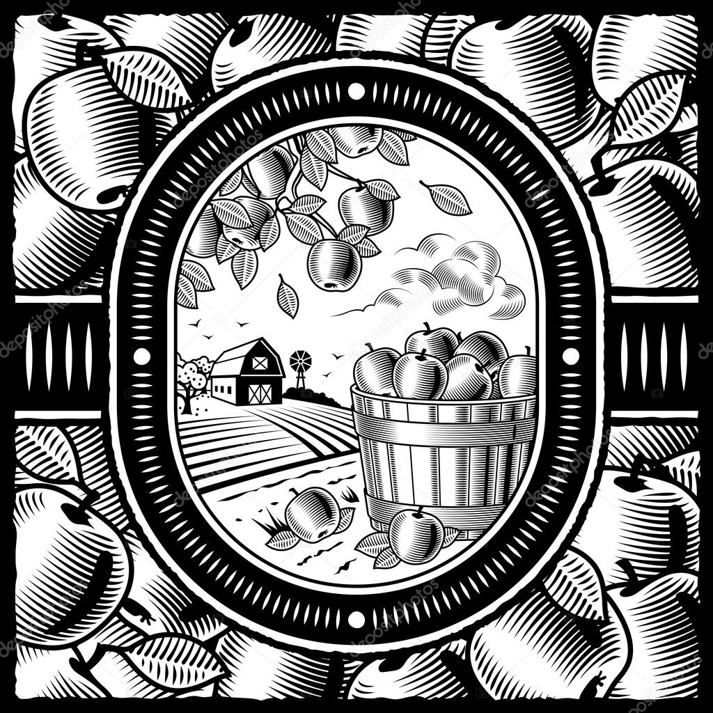 Retro apple harvest in woodcut style. Black and white vector illustration with clipping mask. — Stock Vector #5086490