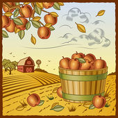 Landscape with apple harvest — Vector de stock