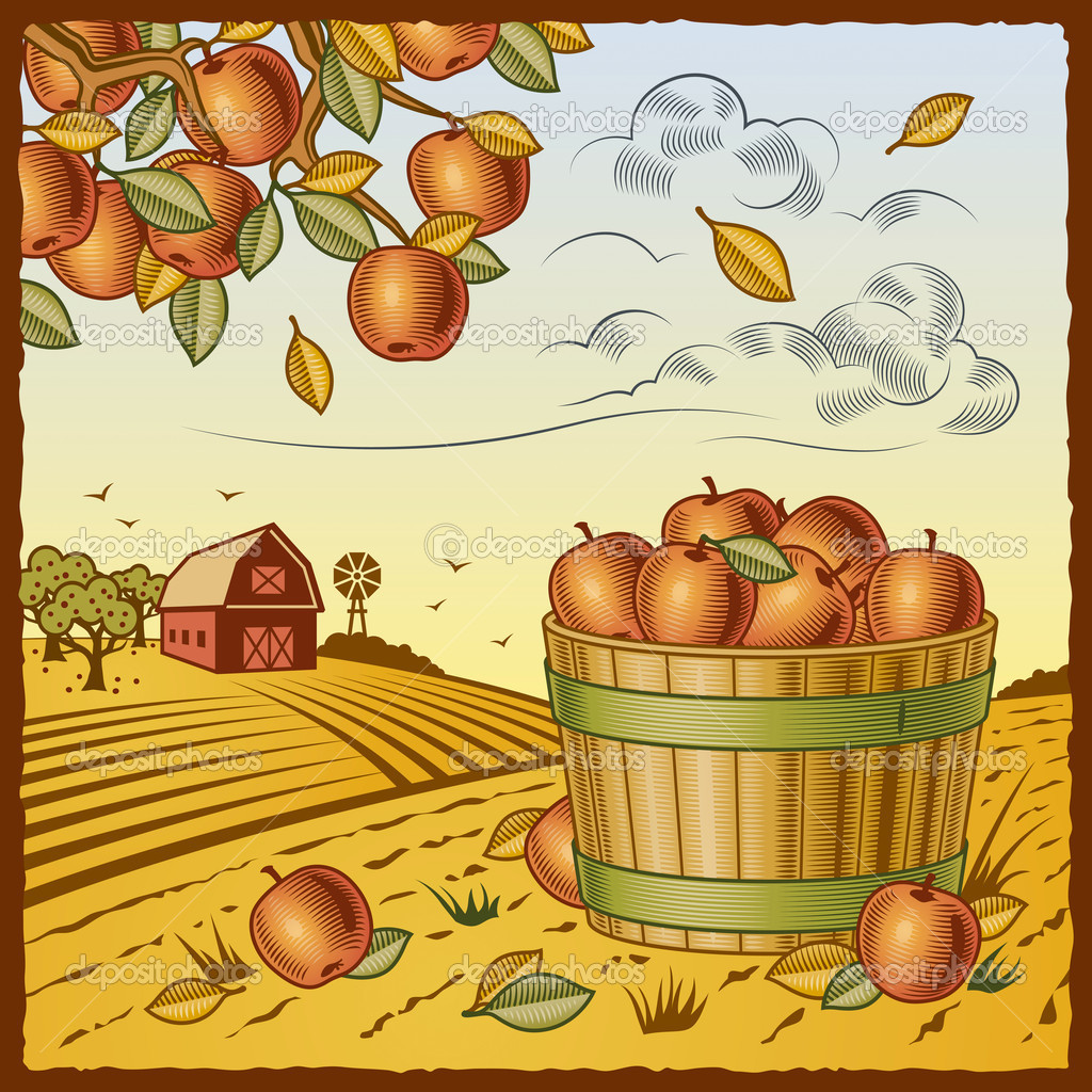 Retro landscape with apple harvest in woodcut style. Vector illustration with clipping mask. — Imagens vectoriais em stock #5095213