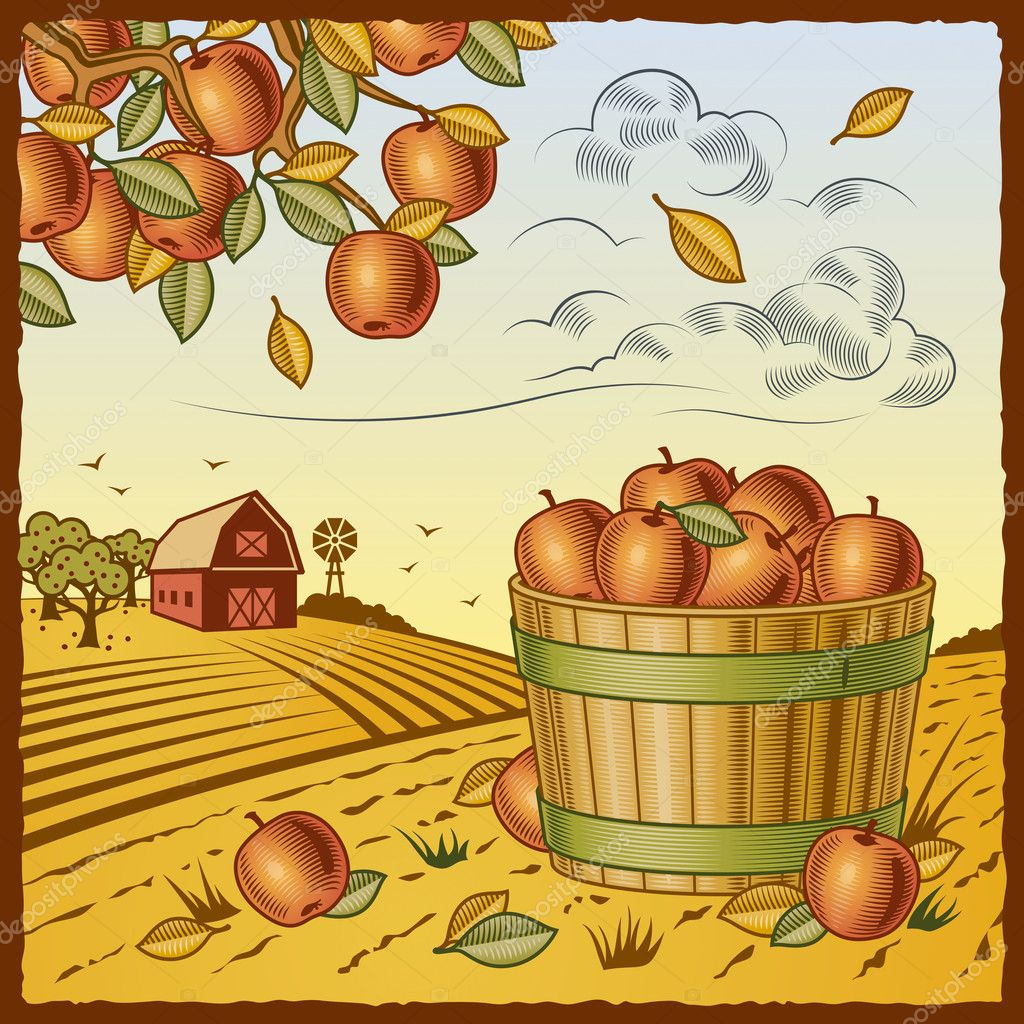 Retro landscape with apple harvest in woodcut style. Vector illustration with clipping mask. — Imagen vectorial #5095213