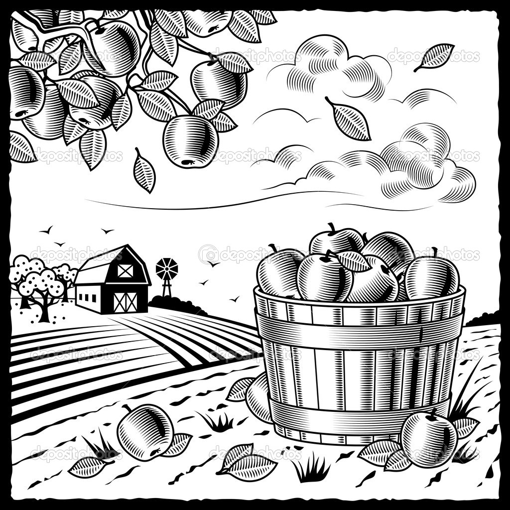 Retro landscape with apple harvest in woodcut style. Black and white vector illustration with clipping mask. — Stock Vector #5095217