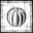 Retro pumpkin black and white — Stock Vector