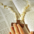 Child hand and cross on the Bible . - Stock Photo