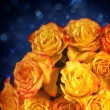 Yellow and orange roses over blue background - Stock Photo