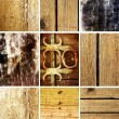 Stock Photo: Set of 9 wood textures