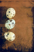 Grunge 鹌鹑复活节彩蛋. — 图库照片