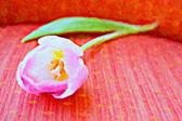 Tulip painting. — Stock Photo