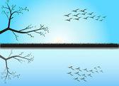 Flight of birds — Stock Vector