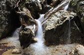 Beautiful waterfall on the log — Stock Photo