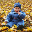 Child among autumn leaves - Stock Photo