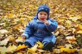Child among autumn leaves — Stock Photo