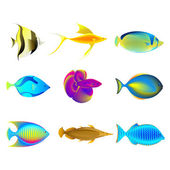 Colorful Fishes — Stock Vector
