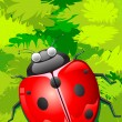 Lady Bug sitting on Leaf - Stock Vector