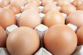 Eggs in a carton — Stock Photo