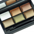 Multicolored eye shadow kit — Stock Photo #5218198