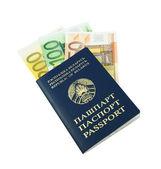 паспорт с банкнотами евро — Стоковое фото
