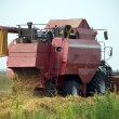 Stock Photo: Red grain harvester combine in a field