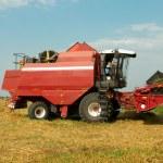 Red grain harvester combine in a field — Stock Photo