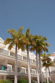 Tropical hotel with palms — Stock Photo
