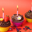 Miniature chocolate cupcakes with candle — Stock Photo #5046301