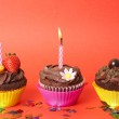 Miniature chocolate cupcakes with candles — Stock Photo